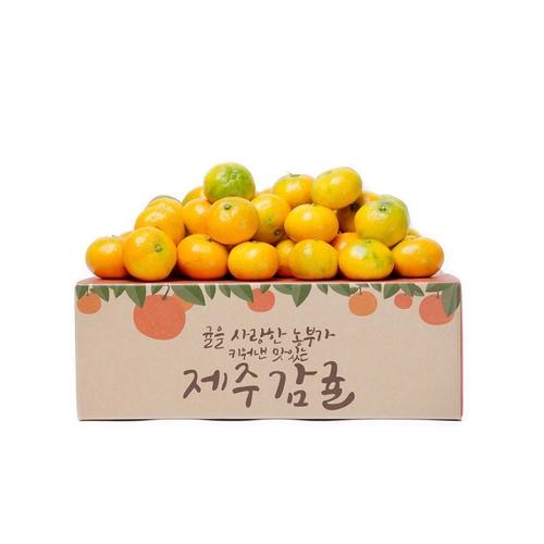 새콤달콤 제주 서귀포 감귤 파격가!